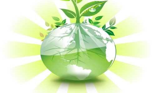 エコ生活にお金がかかるなんて、おかしくないですか?