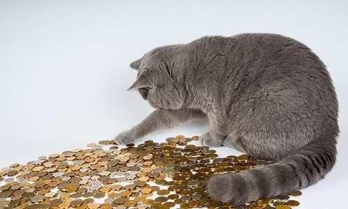 『時間をかければ誰でもお金持ちになれる!』