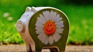 piggy-bank-1429528