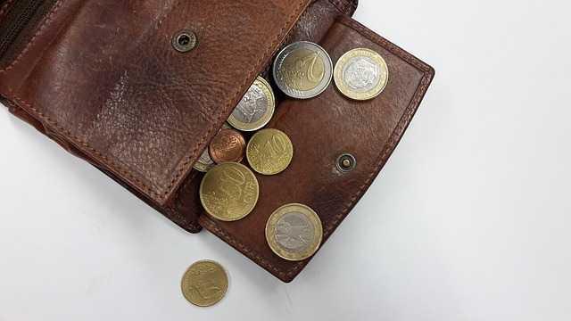 purse-1359848