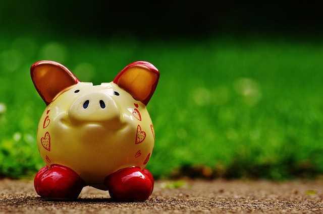 piggy-bank-1429584