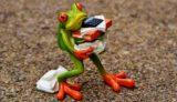 frog-1339892