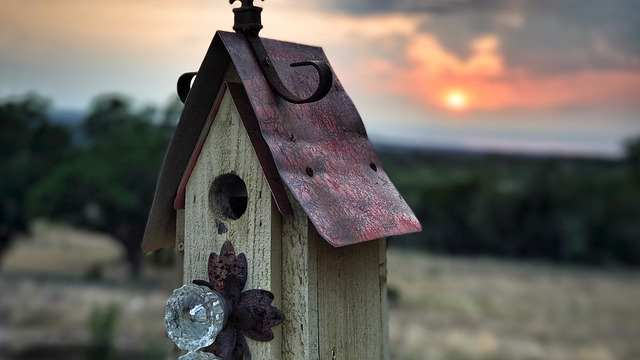 bird-house-2330452
