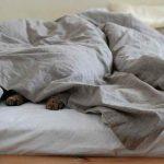 ふとんで寝るメリット