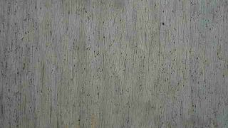wood-2090724