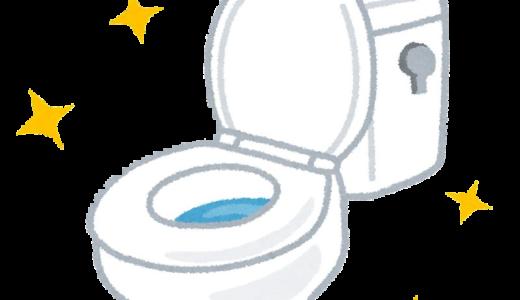 過炭酸ナトリウム(酸素系漂白剤)でトイレの詰まり予防。