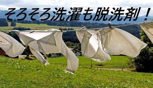 【節約洗濯】洗濯コストが馬鹿にならないから脱洗剤洗濯!