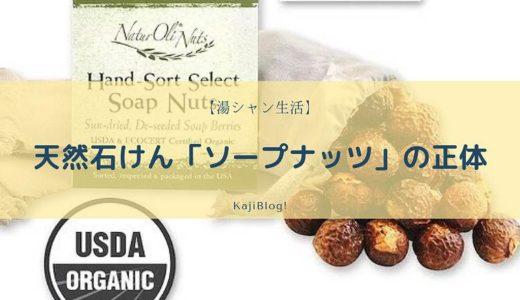 天然石けん「ソープナッツ」の正体