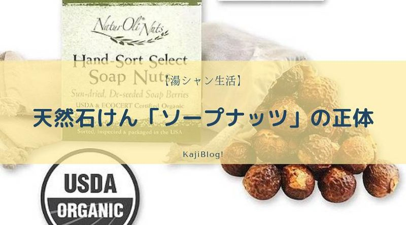 soap nuts syotai