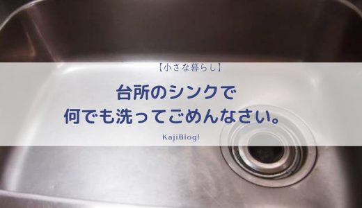 台所のシンクで何でも洗ってごめんなさい。