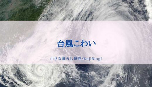 台風こわい