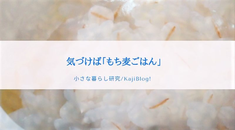 kizukeba mochimugigohan (2)